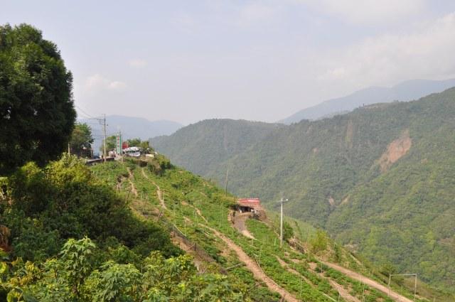 http://muenchenvenedig.com/media/upload/Taiwanfotos/DSC_1109_640x425.JPG